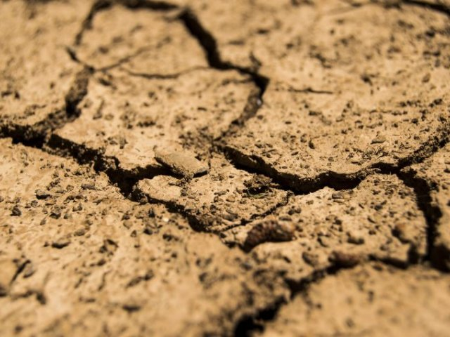 Soil Remediaition